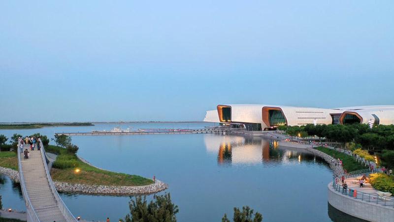 Tianjin restores coastal wetlands