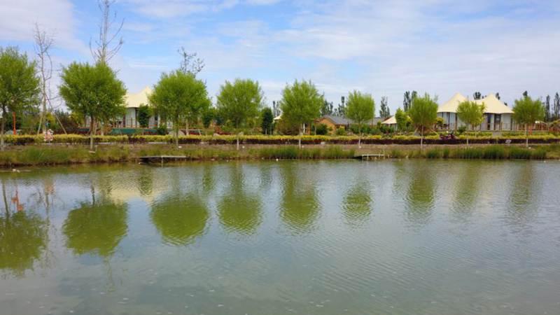 Ecological environment improved in Linze, Gansu