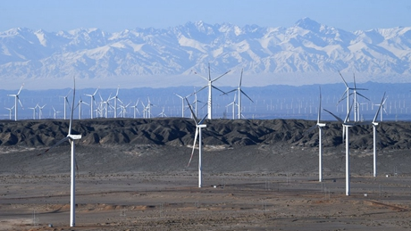 China's renewable energy capacity up in Jan.-May