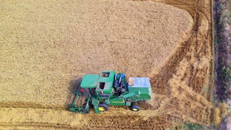 Summer harvest hits full swing across China