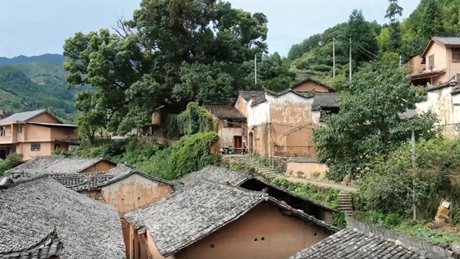 MeetZhejiang: Preserving traditional houses injects new life into Chinese villages