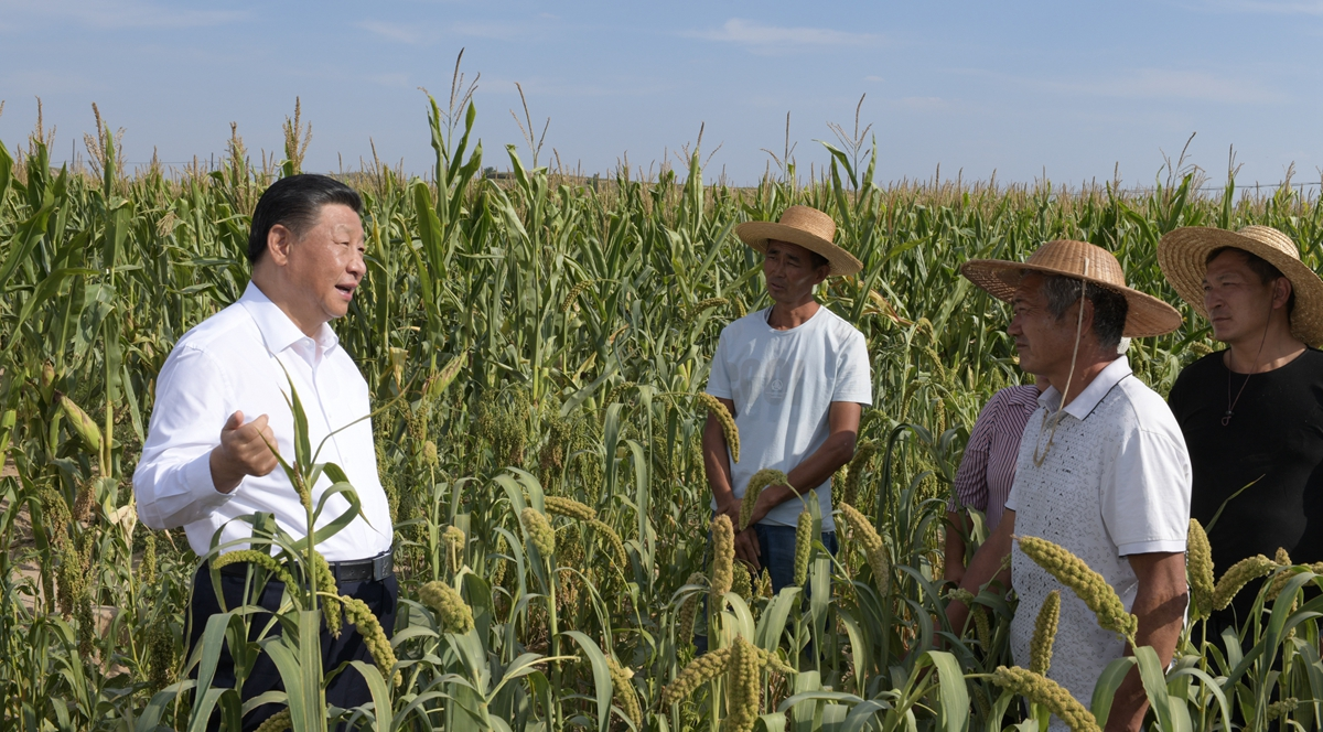 Xi Focus: Xi inspects northwest China's Shaanxi Province