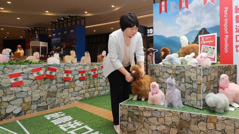 Pic story: Chinese businesswoman benefits from CIIE
