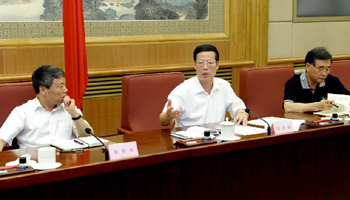 Vice Premier presides over 18th plenary meeting of Three Gorges Project