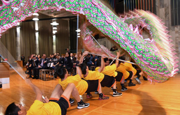 Celebration on Chinese Dragon Boat Festival held in New Zealand for greater understandings