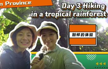 GLOBALink | Trip to mysterious western Yunnan Province Day 3 - Hiking in a tropical rainforest