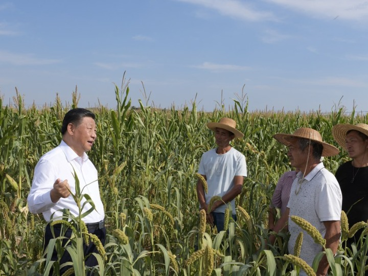 Xi extends greetings ahead of Chinese farmers' harvest festival
