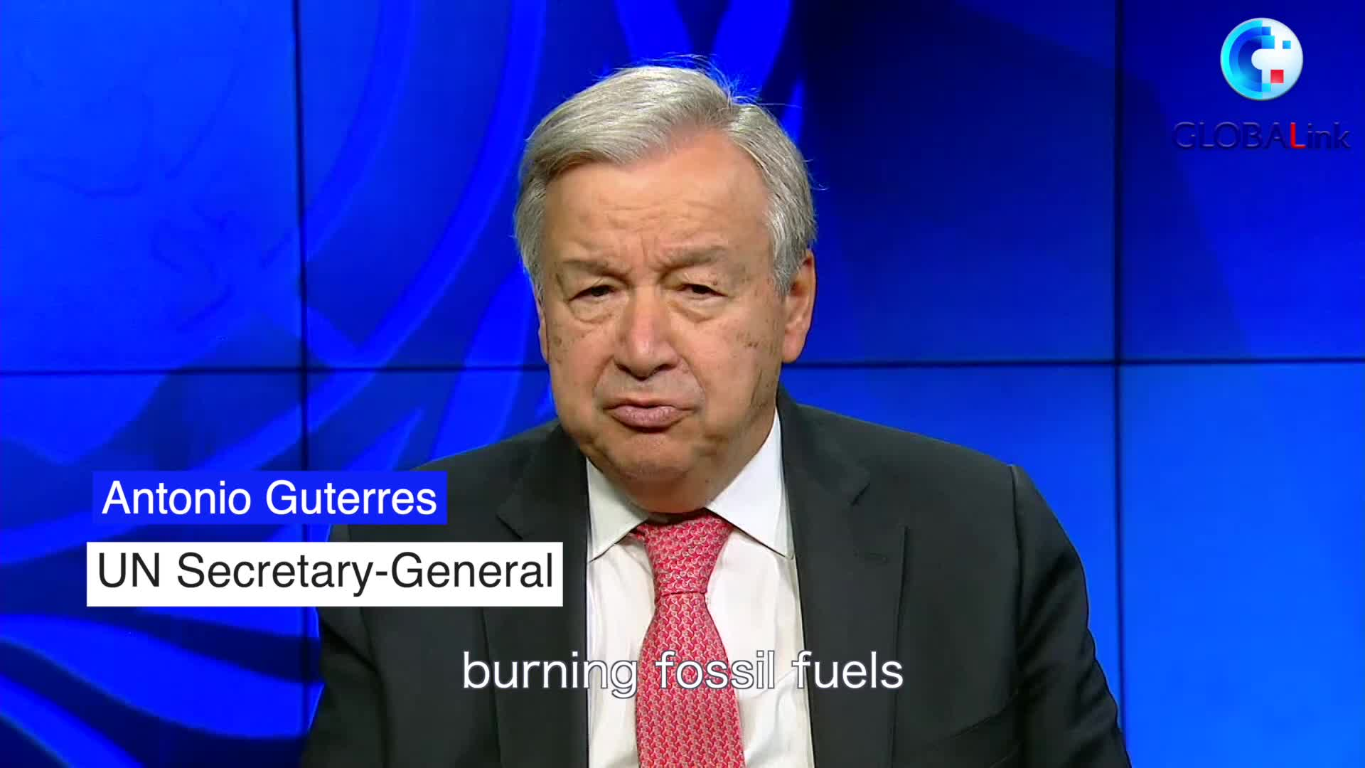 GLOBALink   Guterres urges bold actions to end biodiversity crisis
