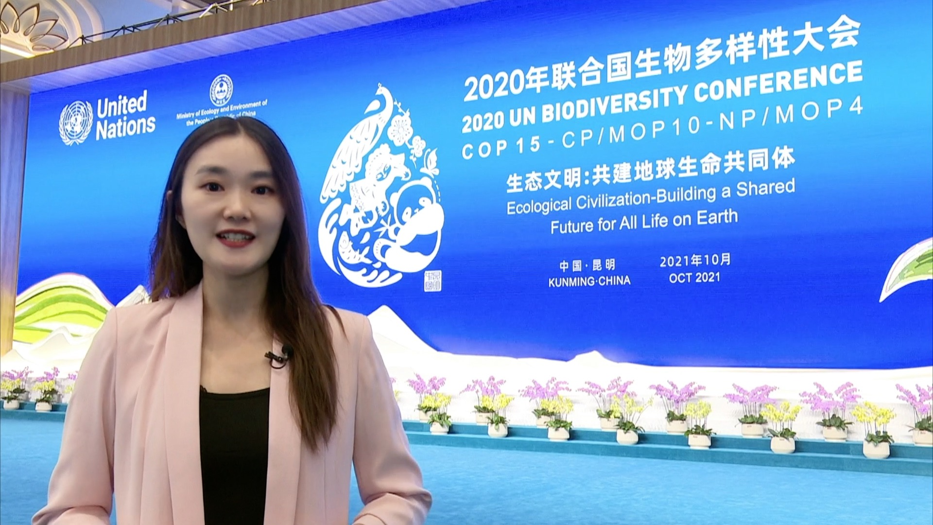 GLOBALink   What do COP15 attendees say about Kunming Declaration?