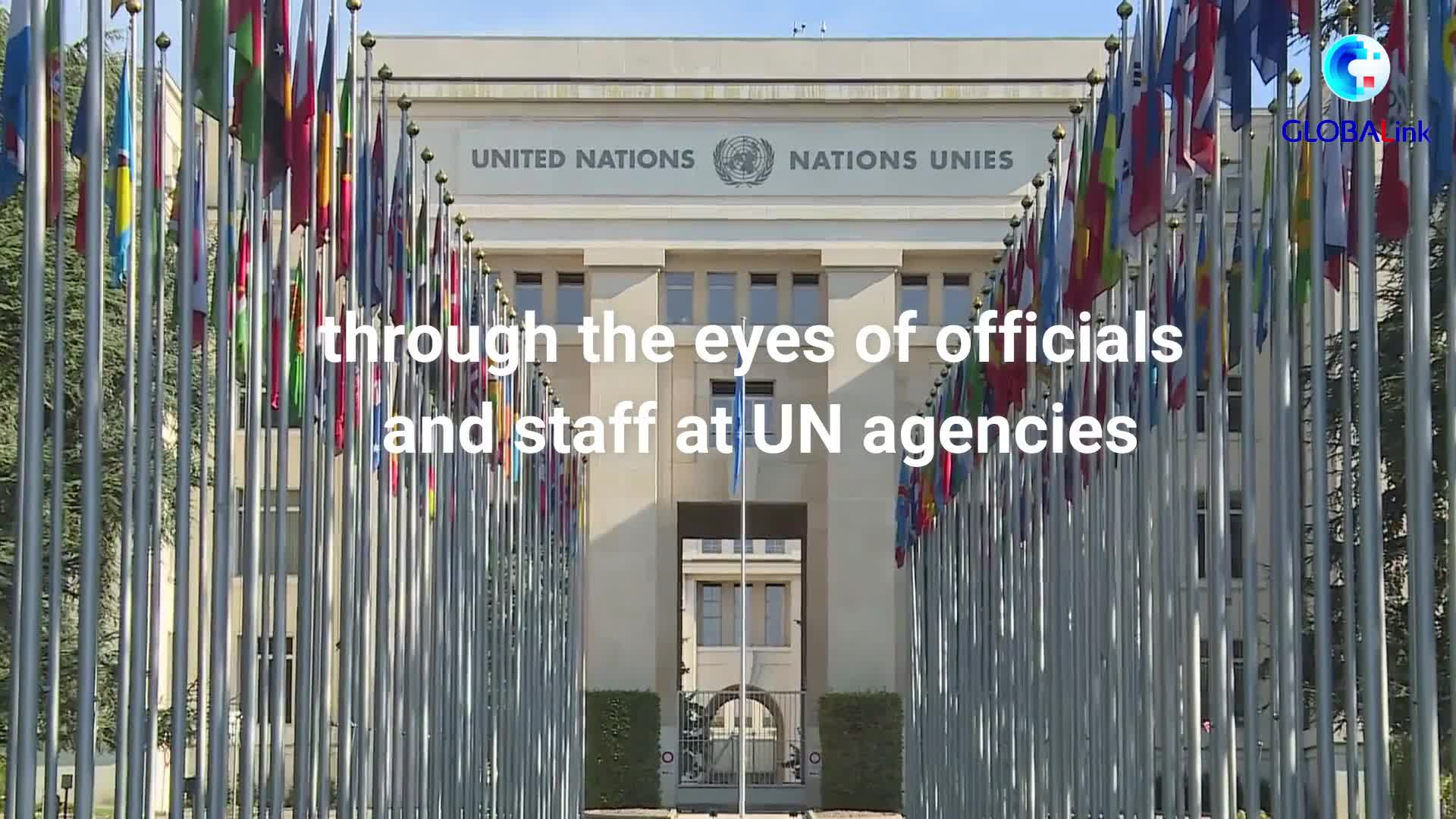 GLOBALink   China's UN contribution in the eyes of UN officials and staff