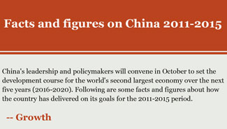 Infographics: Facts and figures on China 2011-2015