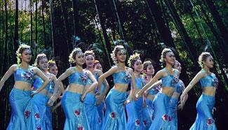 Honghe Cultural Art Festival closes in SW China