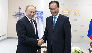 Putin receives exclusive interview with Xinhua's president