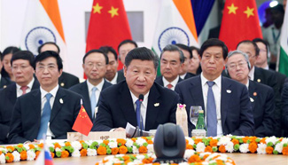 President Xi: Cement confidence, make joint efforts for development