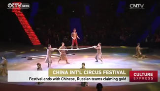 Int'l Circus Festival ends with Chinese, Russian teams claiming gold