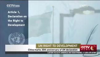 China marks 30th anniversary of UN declaration