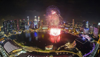 Singapore welcomes New Year with spectacular fireworks play