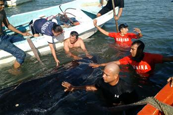 Local fishermen, First Naval Region staff help stranded whale in Mexico