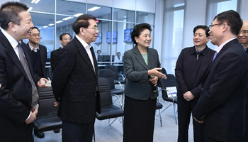 Vice premier inspects new technology base of Chinese Academy of Sciences