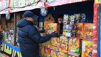 Beijing cuts number of fireworks retail outlets during Spring Festival