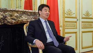 Interview: Sino-French ties won't change main direction in 2017: ambassador
