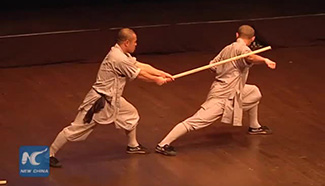 Amazing Shaolin Kung Fu show wows audience in Palestine