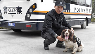Police dogs on duty in Hefei during Spring Festival travel rush