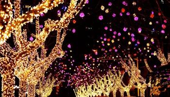Decorations, lanterns illuminated to greet Spring Festival in China