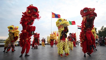 Celebrations made in Cambodia to welcome Chinese Spring Festival