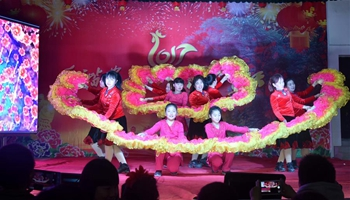 Villagers take part in Spring Festival gala in central China's Hubei