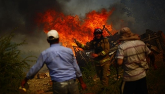 9 killed in Chile forest fires
