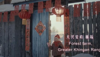 Spring Festival video special: Waiting for your company