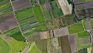 Aerial photo of rural scenery in Liuzhou, S. China
