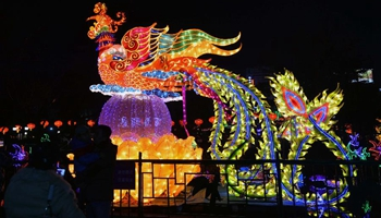 Tourists visit Baotu Spring Lantern Festival to celebrate Chinese New Year