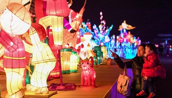 Lantern fair held in SW China's Chongqing