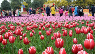 Tourists view tulip flowers in south China's Guangxi