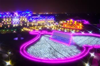 Rose lights illuminate sunflower park in Guangzhou