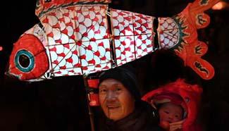 Fish-shaped lanterns parade held in east China