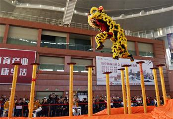 Lion dance competition held in China's Guangdong Province