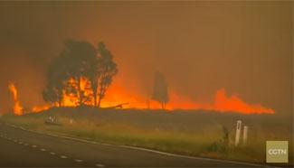 Australian bushfires threaten properties, close roads