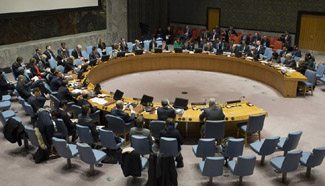 "UN Security Council urges joint measures to protect ""critical infrastructure"" from terrorist attacks"