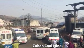 Eight dead in central China coal mine blast
