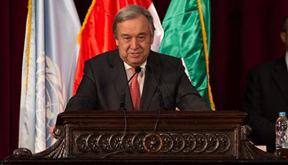 "No ""plan B"" for Mideast two-state solution: UN chief"
