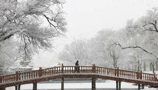 Snowfall hits N China's Hebei
