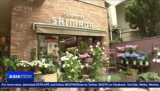 Cut Chrysanthemums top Japan's flower market