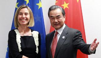 China, Europe to promote open world economy: Chinese FM