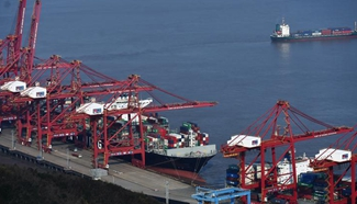Container throughput of Zhoushan Port up 4.5 pct y-on-y