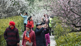 2017 International Plum Blossom Festival held in E China