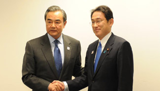 Chinese FM calls for efforts to bring China-Japan ties back on right track