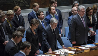 UN Security Council pays tribute to late Russian UN Ambassador Churkin